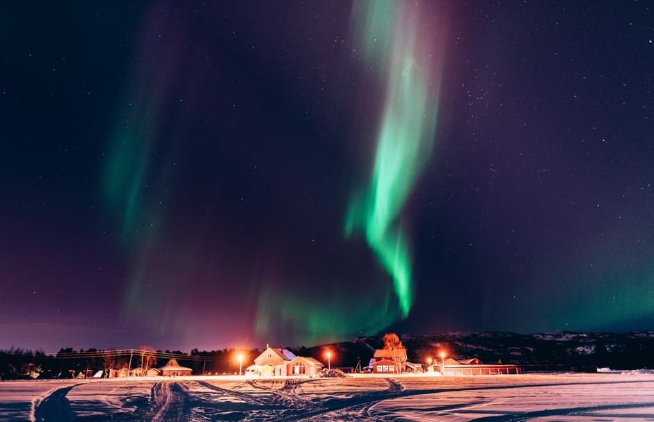 Holmen Husky Northern lights