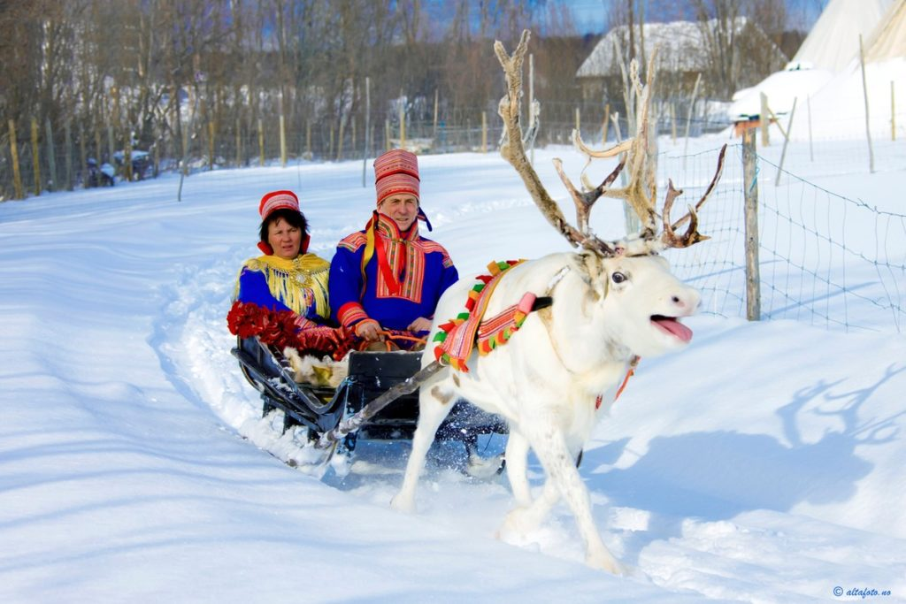 samisiidaalta samer samisk reinsdyr